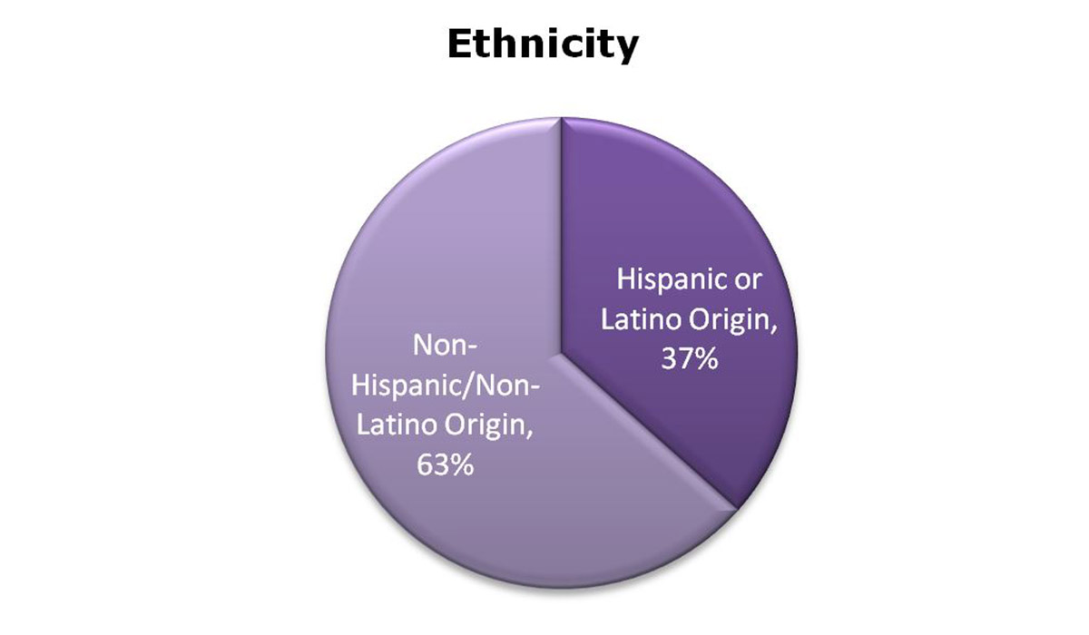 Pie chart showing percentage of enrollment by race