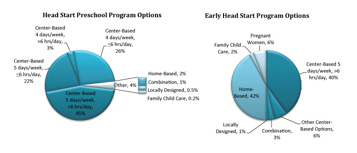 Pie chart - Early Head Start Program Options