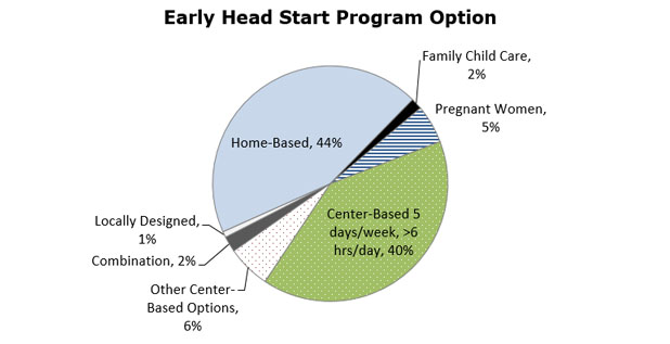 Pie chart - Early Head Start Options