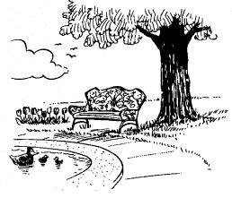 bench outside at a pond