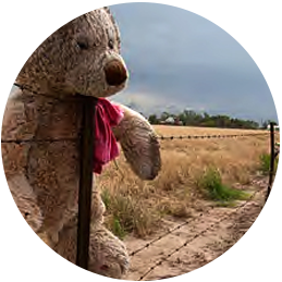 Teddy bear tied to a fence after a tornado